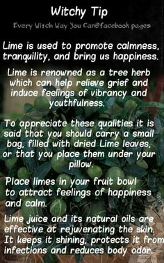 Witchy tip lime