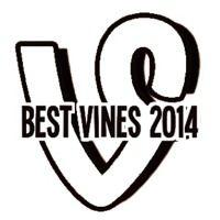 "Watch BEST VINES OF 2014's Vine ""FOLLOW BEST VINES OF 2014 FOLLOW BEST VINES OF 2014"""