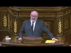 Joan Capdevila el Diputado más cachondo pide bajada IVA Veterinario