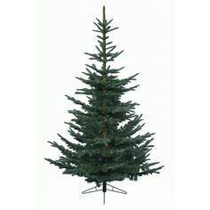 10ft Green Christmas Tree - Nobilis Fir - Artificial Christmas Tree