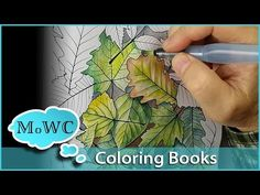 Coloring with Watercolor in Adult Coloring Books - YouTube