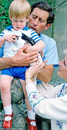 Pictured, Prince Harry is held by his father Prince Charles as he strokes the family's pet rabbit