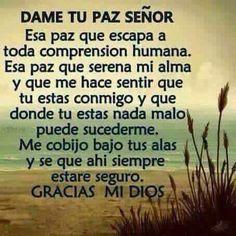 Dame to Paz Senor Faith Quotes, Bible Quotes, Bible Verses, Me Quotes, Qoutes, Spanish Prayers, Frases Humor, God Prayer, Religious Quotes