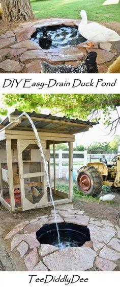 DIY Attractive Easy Drain Duck Pond - Provides ducks with swimming pool DIY Attractive Easy-Drain Duck Pond - TeeDiddlyDee Backyard Ducks, Backyard Farming, Ponds Backyard, Chickens Backyard, Backyard Ideas, Canard Coop, Duck Enclosure, Chicken Enclosure, Duck Pens