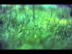 Darkwood dub - Moa - YouTube