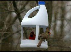 Comedero reciclado para aves