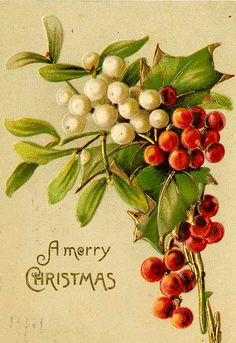 A Merry Christmas...