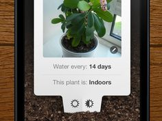 Plant Pals — need this app!