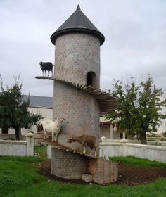 #goatvet loves this Goat Tower from South Africa - But I would remove all the grass in this small yard and install a fence-line feeder