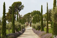 Frederic Fekkai,gorgeous estate he shares with his family in the Aix-en-Provence region of France