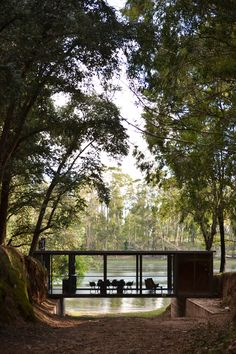 This glazed pavilion-like living space traverses a shallow ravine that runs through a eucalyptus forest.