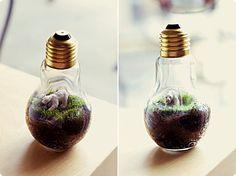 DIY lightbulb terrariums (via http://blissfulfetes.blogspot.com)