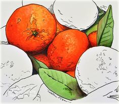 Realistic Copic colouring  0    YR31    BV02, BV04, BV25    RV95, RV99 (I used Blue-Violets and Red-Violets in shadow areas to cool the oranges, skipping the grays entirely.)     YG11, YG61, YG63, YG67    YR00, YR01, YR02, YR04, YR07, YR09 (Yes, I overdid it here--could have gotten by with fewer, but why?)    E08      Pens:    Black and Gray Copic 0.3 Multiliners