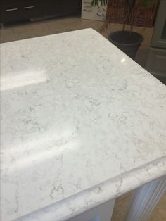 Lusso Silestone Quartz Belmar House In 2019 Quartz Silestone Countertops, Concrete Countertops, White Quartz Countertops, Quartz Bathroom Countertops, Outdoor Kitchen Countertops, Kitchen Counters, Kitchen Islands, Kitchen Cabinets, New Kitchen
