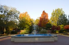 The fountain on the quad has been a campus landmark for generations.