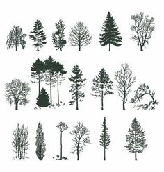 Tree silhouette collection vector 375478 - by nezabarom on VectorStock® - Tattoos - Cute Tattoos, New Tattoos, Small Tattoos, Tatoos, Flash Tattoos, Pretty Tattoos, Forest Tattoos, Nature Tattoos, Illustration
