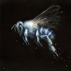 Esao Andrews: White Bee (2013) Oil on wood