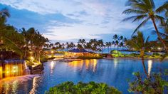 Punalu'u Beach : Big Island, Hawaii : Daily Escape : TravelChannel.com