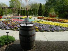 Children's Garden in Bloom Spring 2012! Dow Gardens