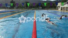 swimmers training in outdoor olympic size swimming pool two lanes