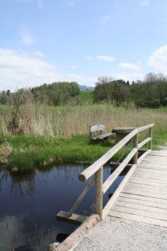 Sitzgruppe an der Brücke, Soier See, Bad Bayersoien, Ammergauer Alpen