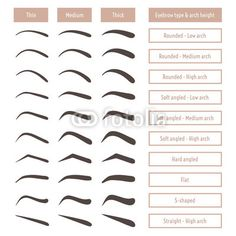 Eyebrow shapes. Various types of eyebrows. Classic type and other. Trimming. Vector illustration with different thickness of brows.  Set with captions. Makeup tips. poster Makeup Tips For Brown Eyes, Eye Makeup Tips, Natural Makeup For Blondes, Natural Makeup Tips, Natural Makeup For Teens, How To Grow Eyebrows, Types Of Eyebrows, Eyebrows On Fleek, Makeup Tips For Beginners