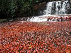 Image from http://www.hike-venezuela.com/media/gran-sabana-quebrada-de-jaspe-large.jpg.