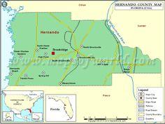 95 Best Hernando County Tourism Bureau images