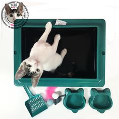 """Um kit ideal para quem está adotando um gatinho e precisa dos itens mais """"básicos"""" para o bem estar do bichano. Verifique o tamanho da caixa de areia antes de efetuar a compra (45x33x10)   Kit contendo: 1 bandeja sanitária média com borda removível (45x33x10) (plástico) 1 pázinha (plástico) 2 comedouros (plástico) 1 kit com 3 brinquedos (cores sortidas) *Não acompanha a gatinha fofinha, foto meramente ilustrativa :)"""