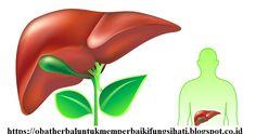 Manfaat Cuka Sari Apel Untuk Detox Liver Secara Alami - Metode yang paling umum dan banyak dilakukan untuk detox liver ialah dengan menggunakan dan memanfaatkan cuka sari apel. http://obatherbaluntukmemperbaikifungsihati.blogspot.com/2016/12/manfaat-cuka-sari-apel-untuk-detox.html