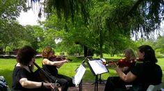 """""""Hallelujah""""  (Cohen)   Kathryn Schilling String Quartet"""