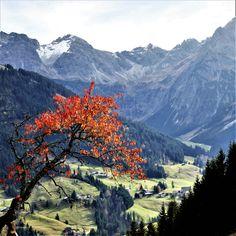 Autumn hike in Kleinwalsertal Hiking, Autumn, Mountains, Nature, Travel, Photos, Walks, Fall, Viajes