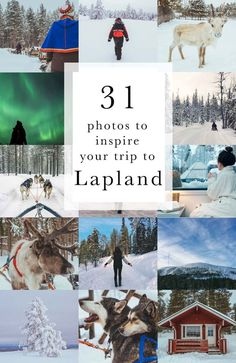 31 photos to inspire your trip to Lapland – Lapland holiday ideas and advice. Travel in Europe. Finland Travel, Denmark Travel, Norway Travel, Finland Trip, Lappland, Lapland Holidays, Winter Holidays, Trips To Lapland, Lapland Finland