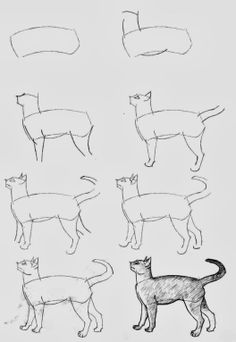 Diy Projects: How To Draw Cats ~~~ More CATS: http://OzziCat.com.au>>>>> well I can't draw this...<< I'm gonna try