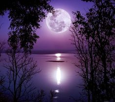 Daily Astrology, August 2018 ~ Full Moon in Pisces By Tanishka Happy Full Moon in Pisces! Unlike other full moons when you're likely to want to fiest(. Beautiful Places, Beautiful Pictures, Moon Images, Full Moon Photos, Moon Pics, Shoot The Moon, Moon Photography, Pink Moon, Moon Lovers