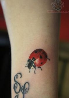 ladybug tattoos | images of pin awesome ladybug tattoo design for girls 2011 on ...