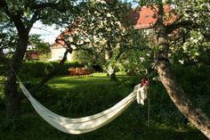 Oslo, Outdoor Furniture, Outdoor Decor, Hammock, Room, Travel, Life, Home Decor, Bedroom