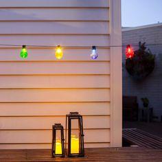 10 LED Multi Coloure
