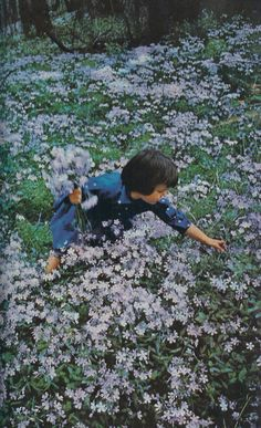 "nationalgeographicscans:"" A girl in a field of meadow phlox, Washington, D. National Geographic Photography, Film Inspiration, Romance, Aesthetic Images, Mother Nature, Mother Earth, Flower Power, Wild Flowers, Scenery"