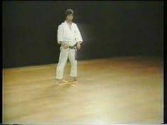 Hangetsu - Shotokan Karate. This is the kata im learning atm