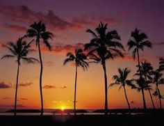 hawaii honolulu - Google Search