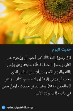Duaa Islam, Quran Quotes, Hadith, Words Quotes, Nature, Quotation, Word Sentences, The Great Outdoors, Mother Nature