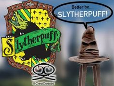 I got: Slytherpuff! What Is Your Hybrid Hogwarts House?