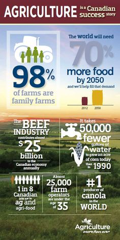 Canadian Agriculture Infographic - the comparing of facts etc. is what makes this an effective infographic
