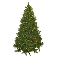 """General Foam Plastics Evergreen Fir Prelit Christmas Tree with 700 Multicolored Lights. GQZ1005 Features: 56"""" Girth 1292 Tips 700 Multi lights Made in Mexico Assembly Instructions: Assembly required. Price: $143.99"""