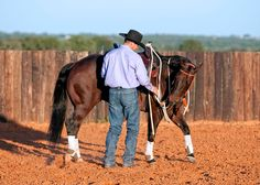 Clinton Anderson demonstrates how to teach your horse this groundwork exercise....Bridle Bending