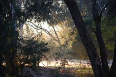 Winter in Wangaratta. Tourism Website, Major Events, Wine And Beer, My Land, Things To Do, Victoria, Sunset, City, Winter