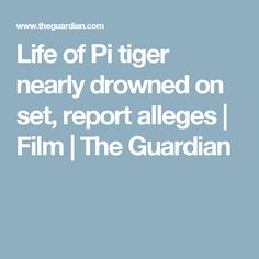 Life of Pi tiger nearly drowned on set, report alleges | Film | The Guardian