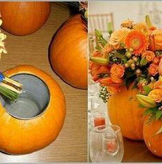 Abóbora + flores