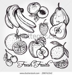 Fruit Garden Stock Vectors & Vector Clip Art | Shutterstock